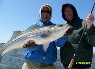 Bluefish and stripers caught during a Blitz